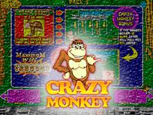 Игровой автомат с бонусам - Crazy Monkey